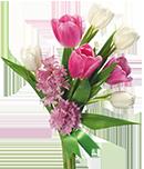Send Flowers To Vasai Naigaon Borivali Mumbai Pune And All Over